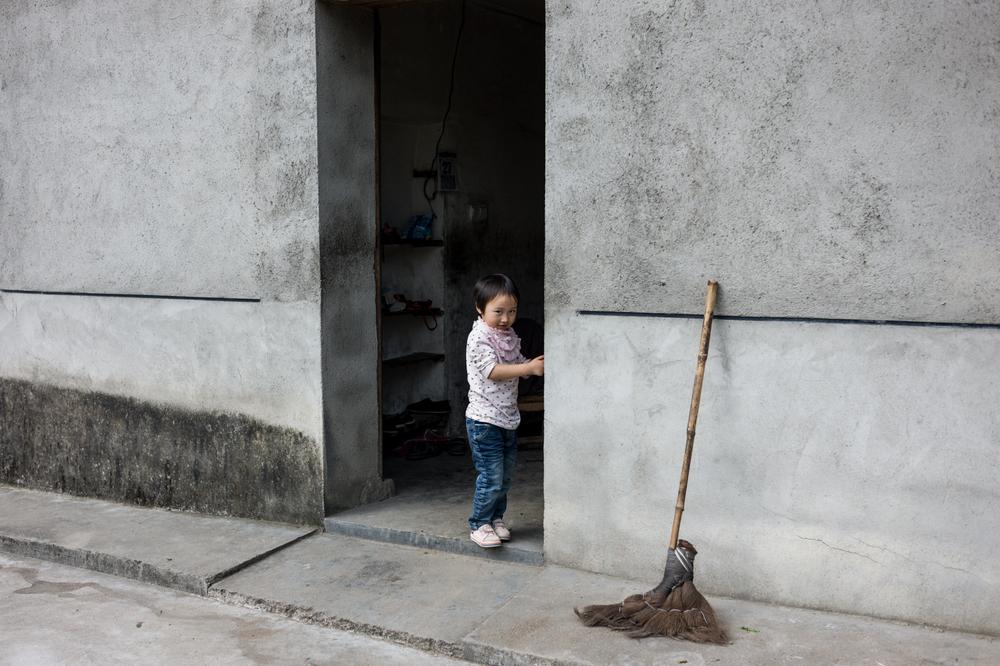 Untitled (Anji county China, 2014)