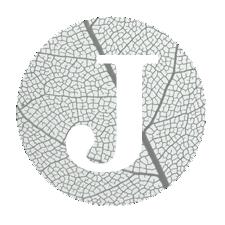 logos-für-page-2DADS.png