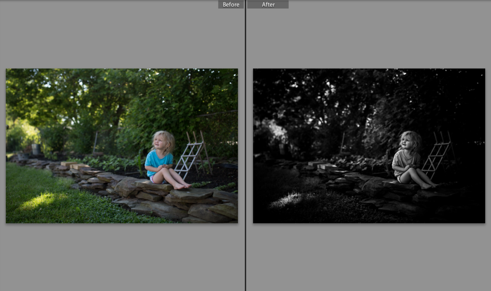 My little garden gnome ;) A high contrast conversion using my very own preset