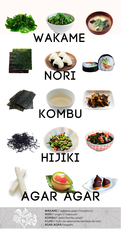 variedades de algas japonesas