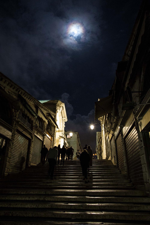 Rialto-Bridge-night-Tatler-22jan15_MichaelNewingtonGray_b.jpg