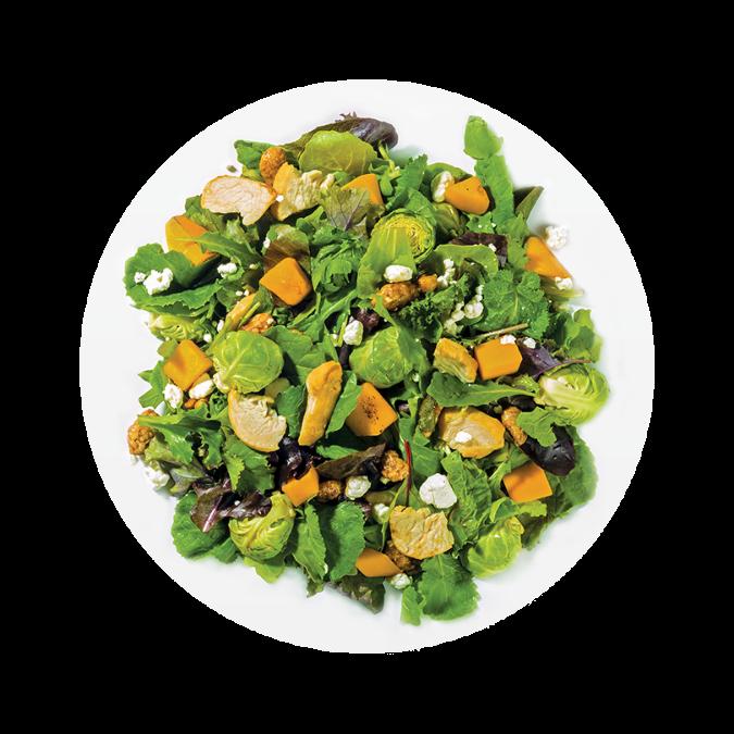 Image Courtesy of SaladWorks