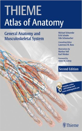 Thieme Atlas of Anatomy by Michael Shuenke.jpg