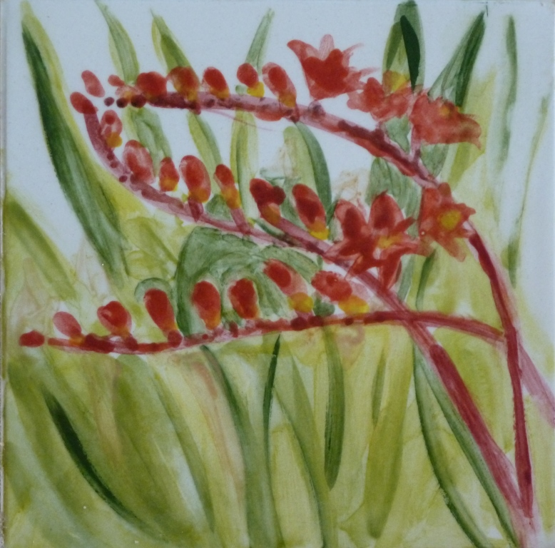 Red Crocosmia - 4x4.JPG