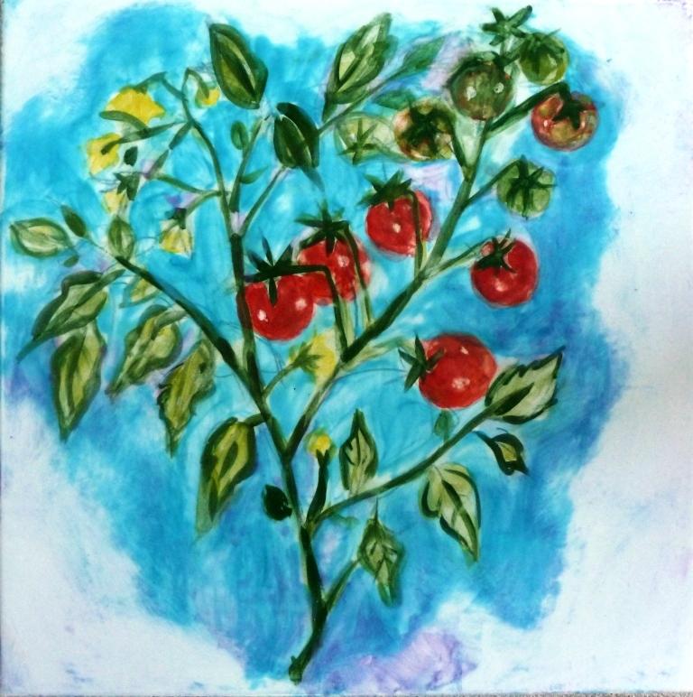 Ripening Cherry Tomatoes - 8x8.jpg
