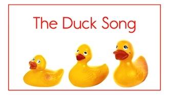 duck330.jpg