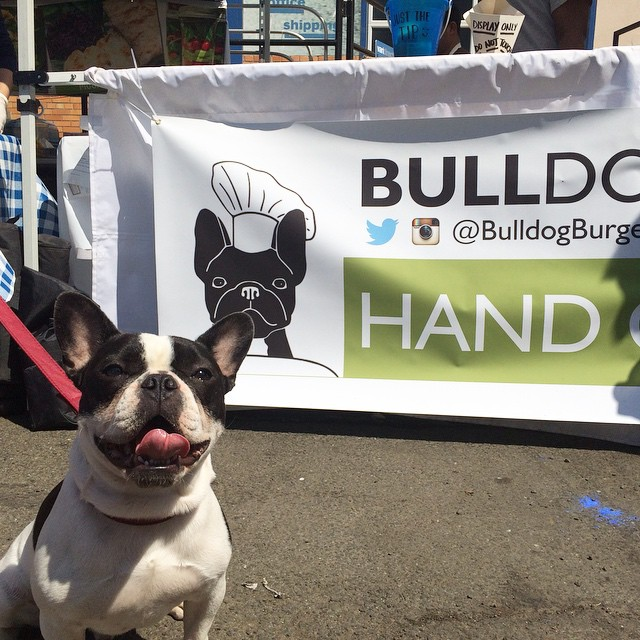 Another satisfied customer! #LICFlea @boozer_the_frenchie