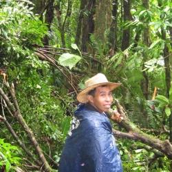 Hike Enrique forest.JPG