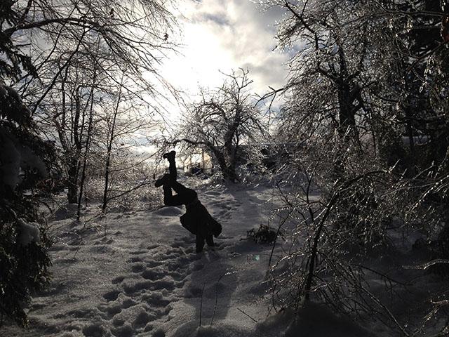Z-winter