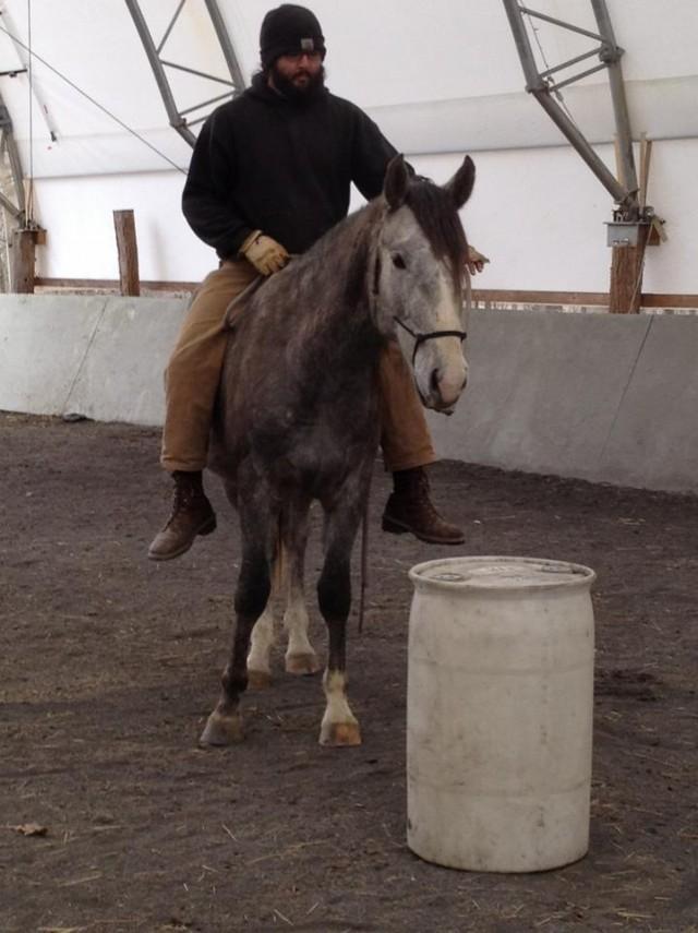 Bareback rider on stallion