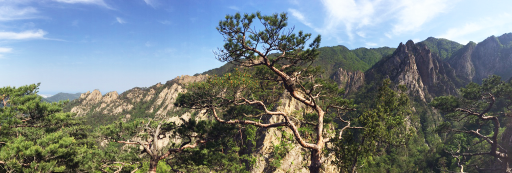 We hiked up to a beautiful lookout on Seoraksan, South Korea.