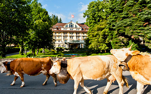 Hotel Le Grand Bellevue (Gstaad)