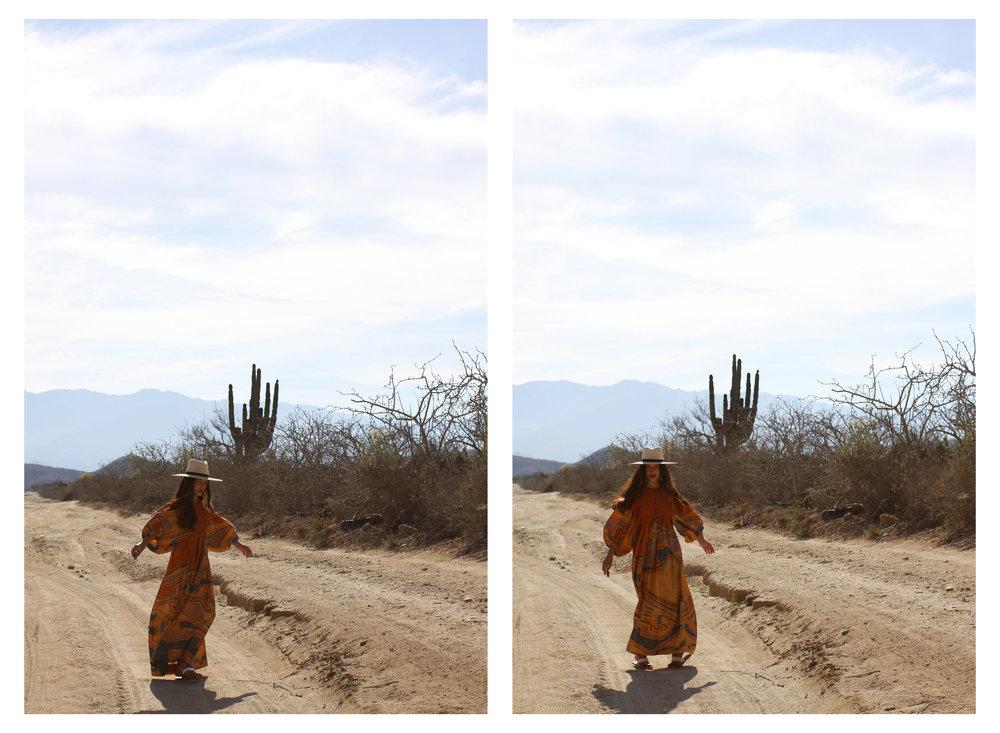Cactus Snakes 5.jpg