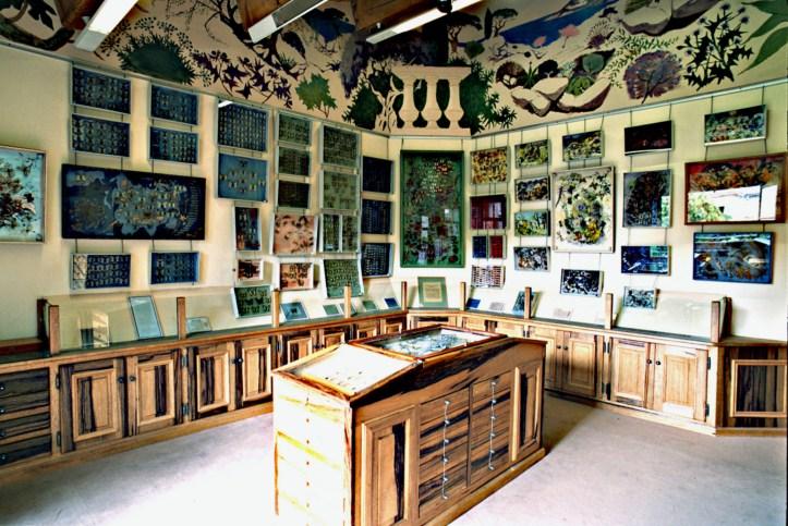 La Maison des Papillons (Saint-Tropez)