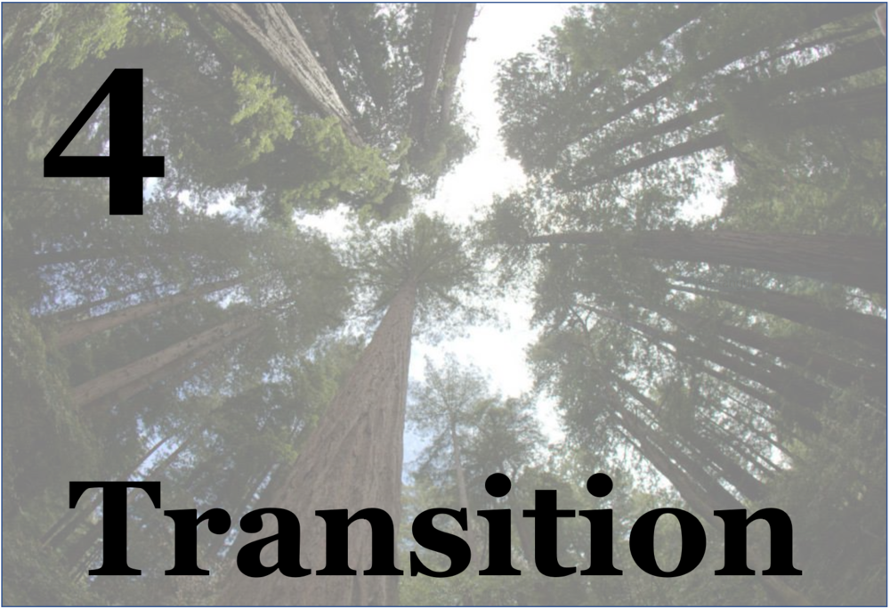 "The end of the year is a ""sending"" into what's next: a ritual of transition more than an end. We do the work of harvesting our learnings as a gift to each other and the larger community, as an opportunity to show appreciation and acknowledgement, and as opportunity to welcome the next group(s)."