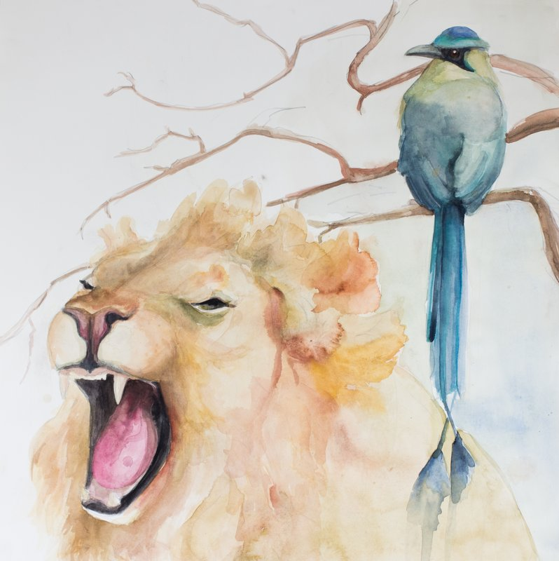 Liona_GreenMagpie_Watercolor_hollywach.jpg