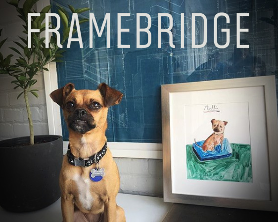 framebridgedog.jpg