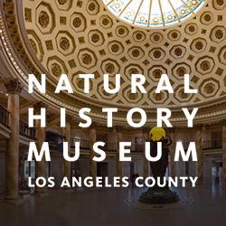 natrual-history-museum-la.jpg