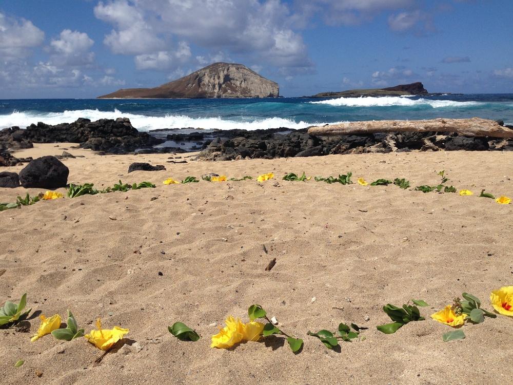 3-makapuu-beach-wedding-2.JPG