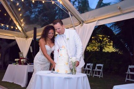 cake-cutting