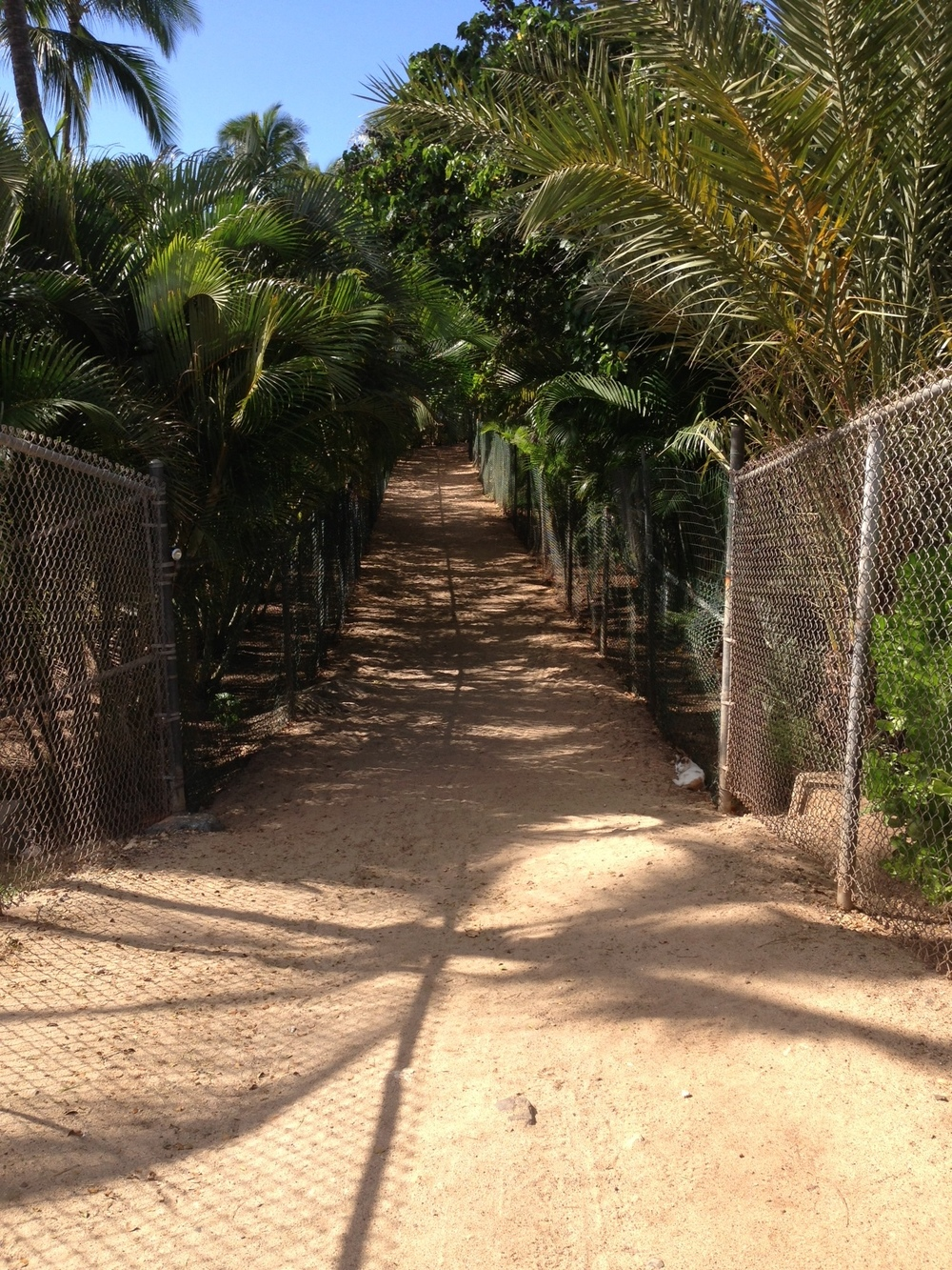 Short pathway from parking area to the beach.
