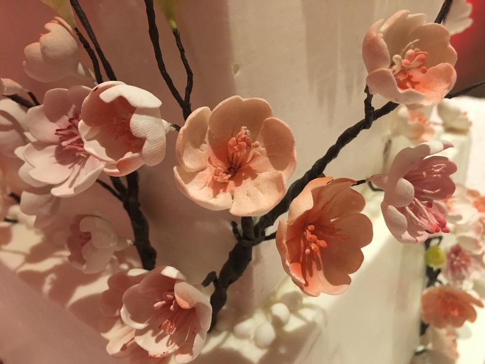 cherry-blossom-cake