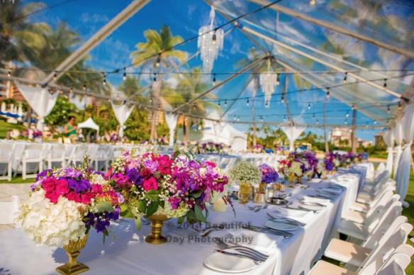 hawaii-tent