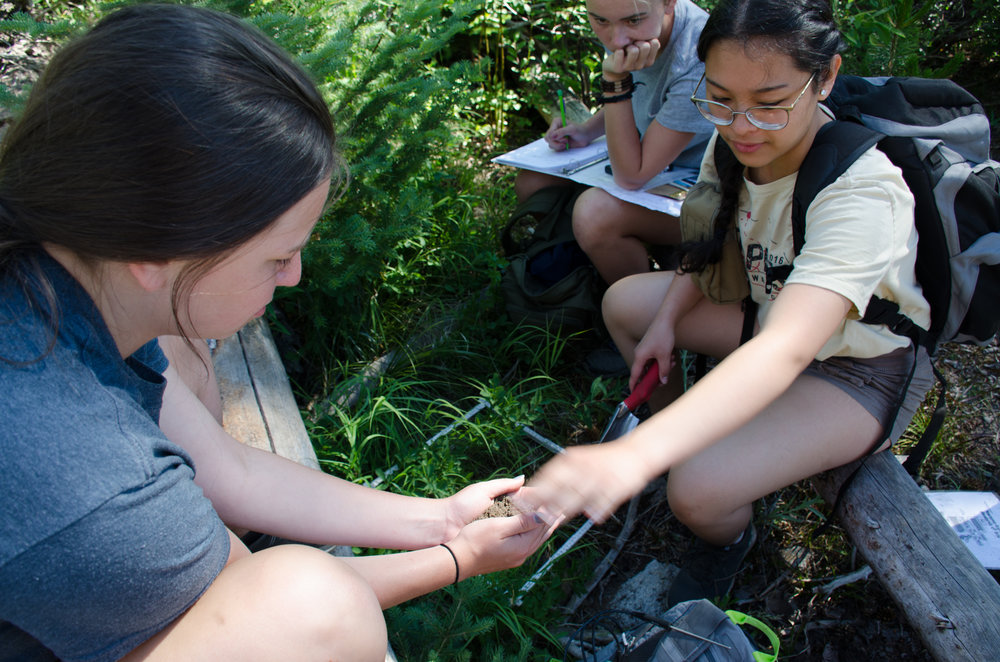 Students test soil type during a biodiversity lab in Payette National Forest