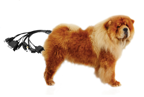 Dog's Bottom Cellphone Charger