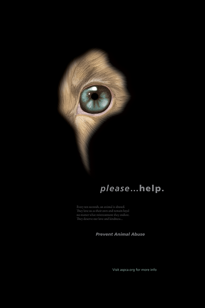 Design for a Cause project poster | Featured in Auburn University's 2014 Juried Student Design Show