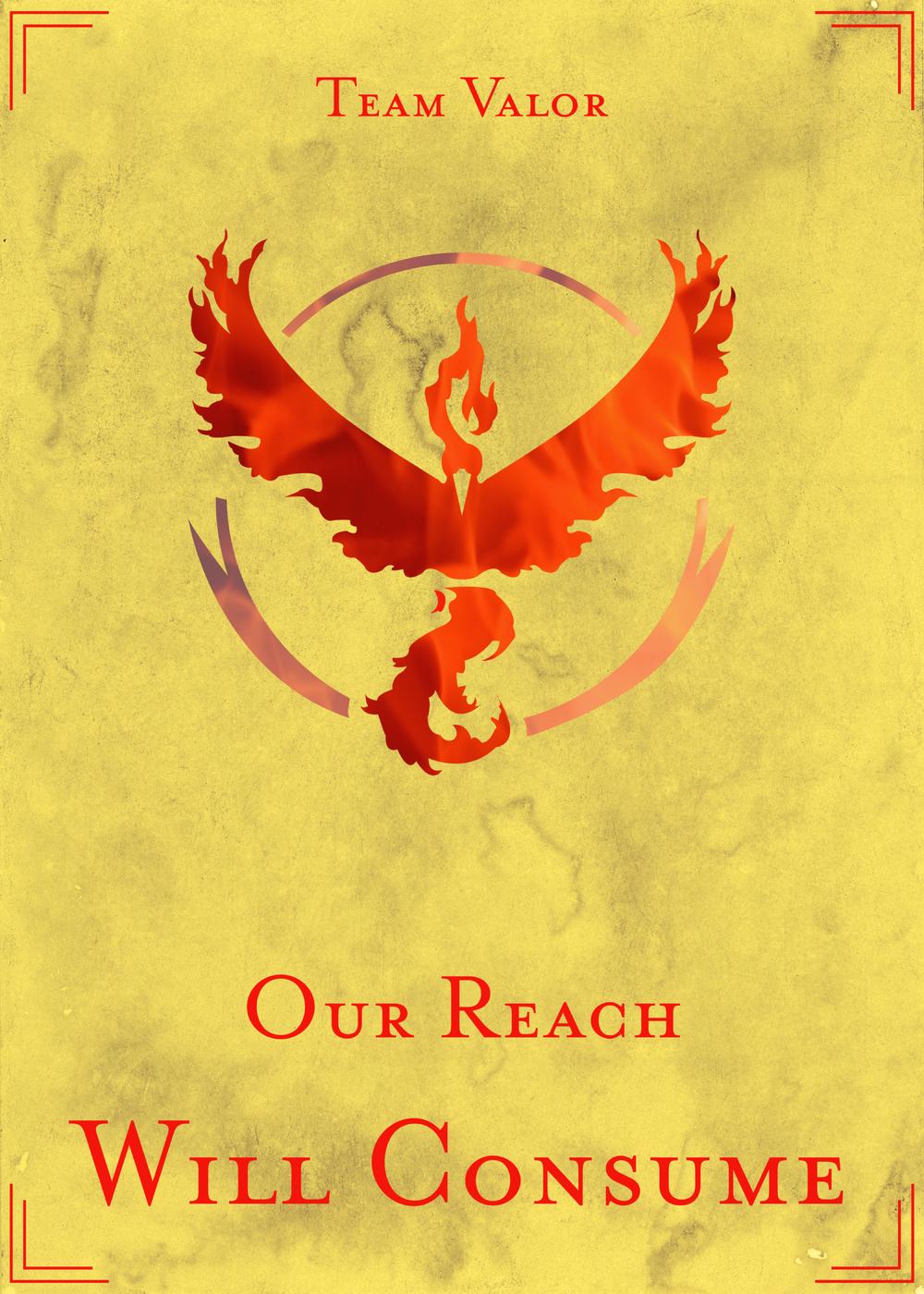 Team Valor House Banner