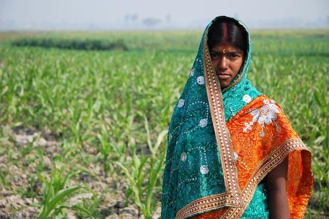 Farmer in Bihar, India