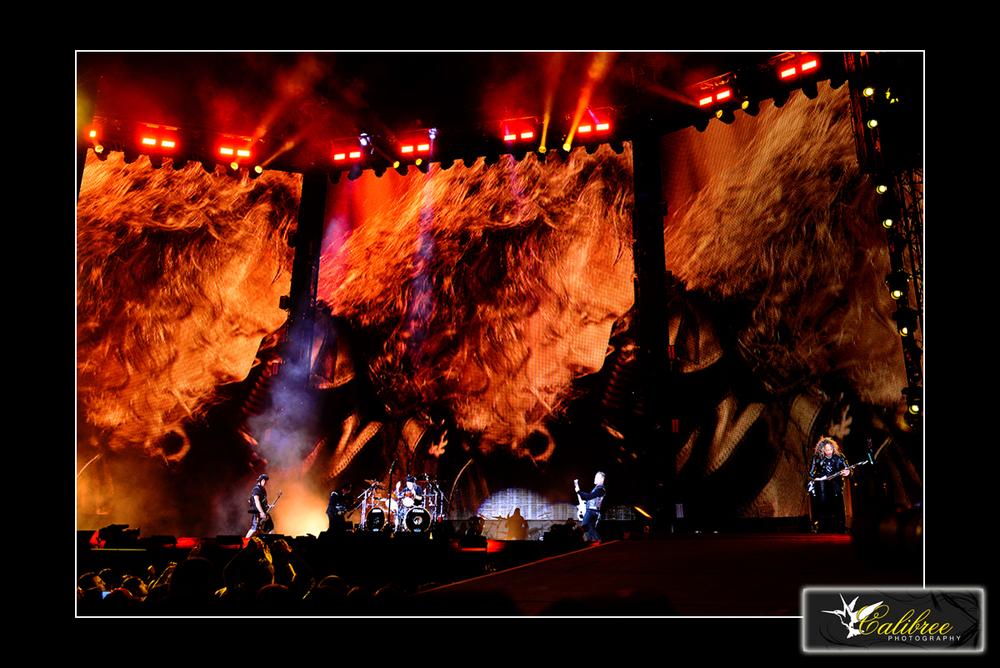 Metallica SB50 HiRes_Calibree  (28) Logo.jpg