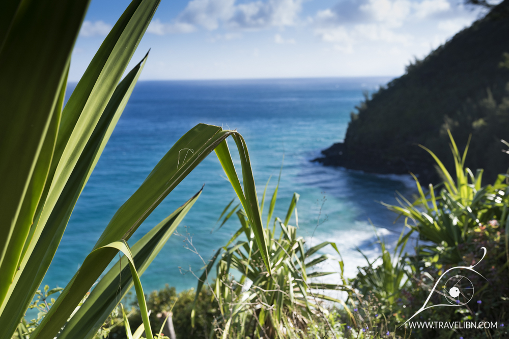 kalalau trail near Hanakapi'ai Valley.jpg
