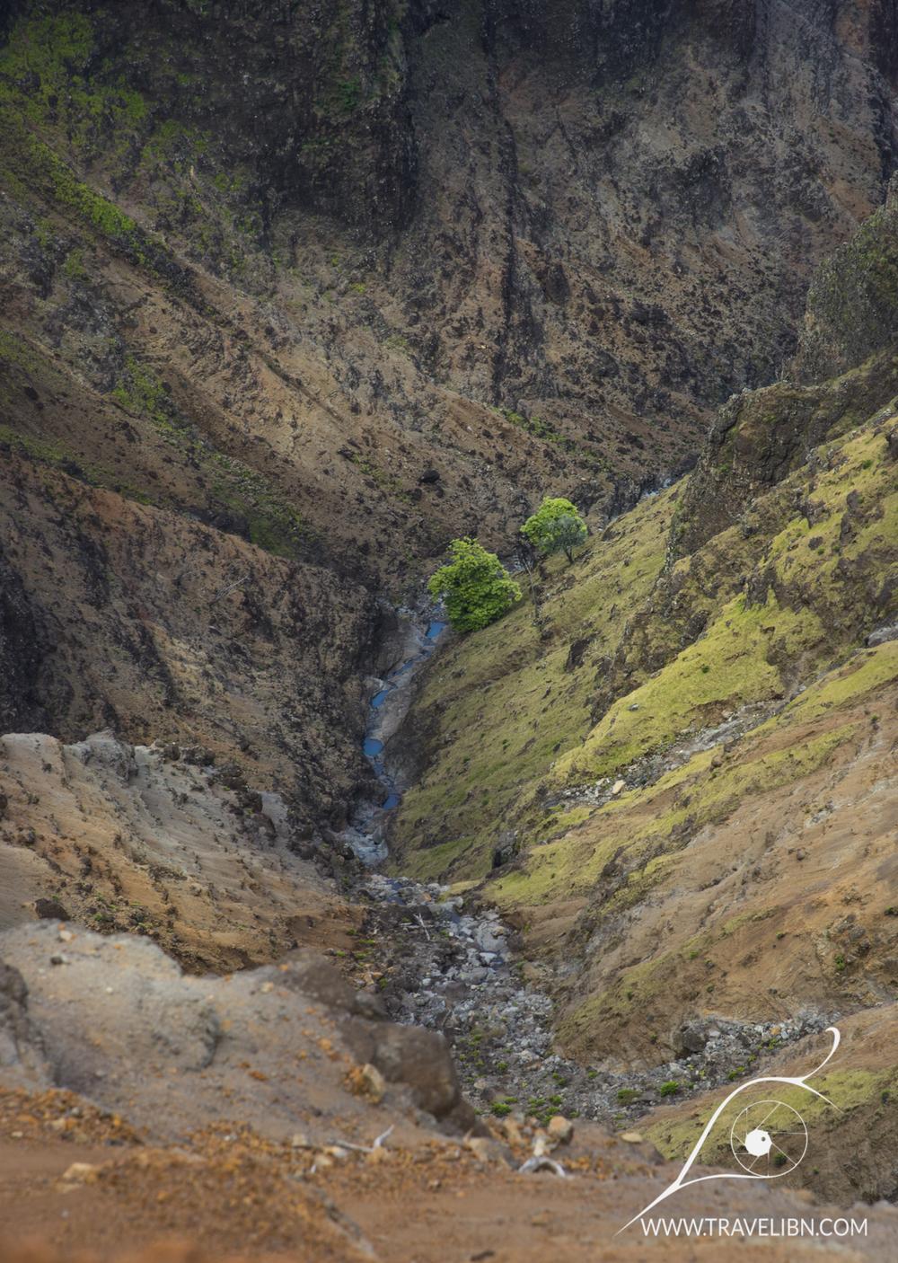 Waime River inWaimea Canyon