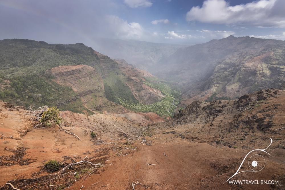 waimea canyon vista.jpg