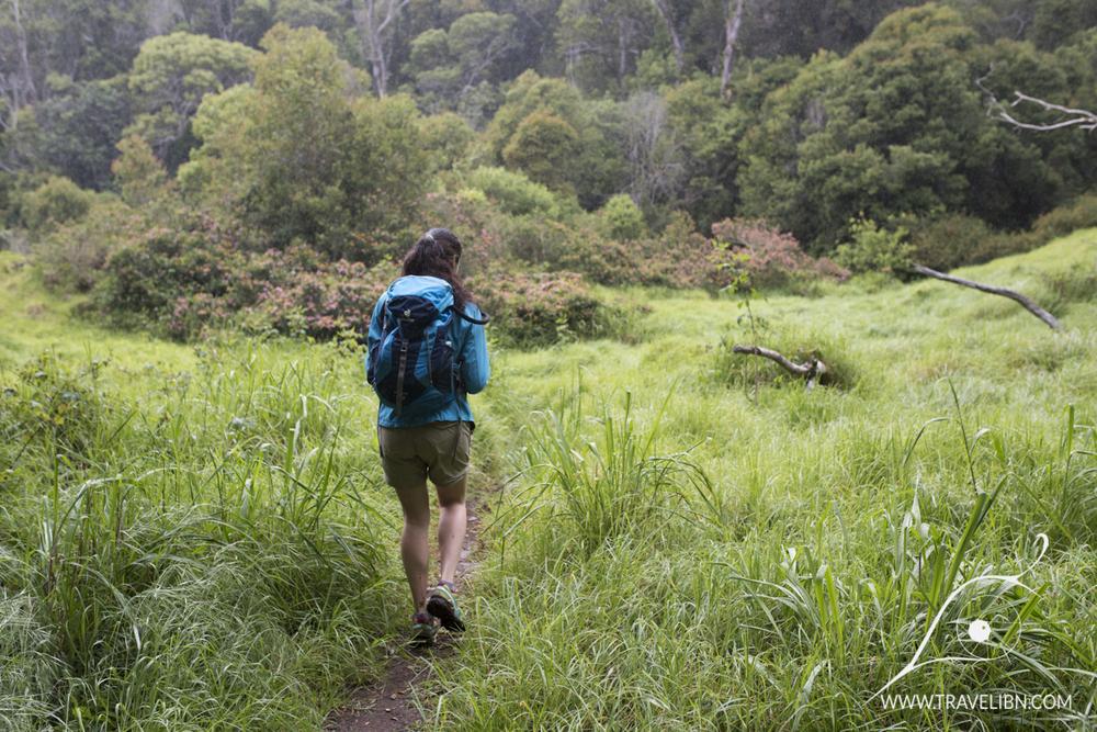 open field nuaolo trail.jpg