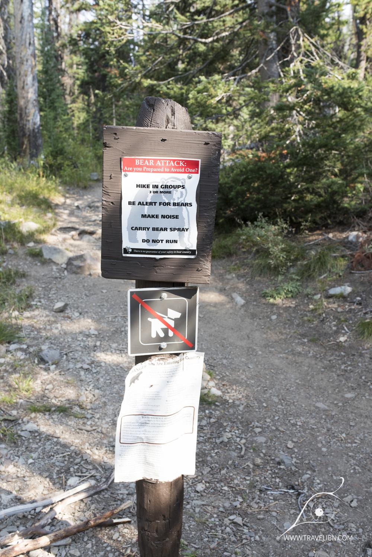 avalanche peak trail-5.jpg