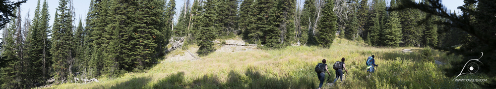 Lower slopes of Avalanche Peak