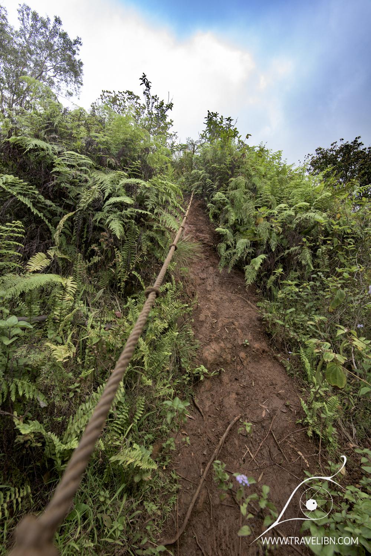 Ropes on Okolehao trail