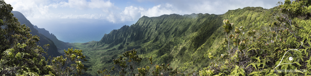 View on Kalalau Valley from Pihea Trail