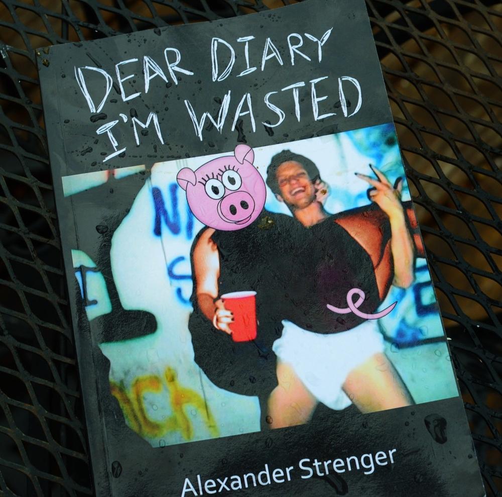 DearDiary2_DDandashi.jpg