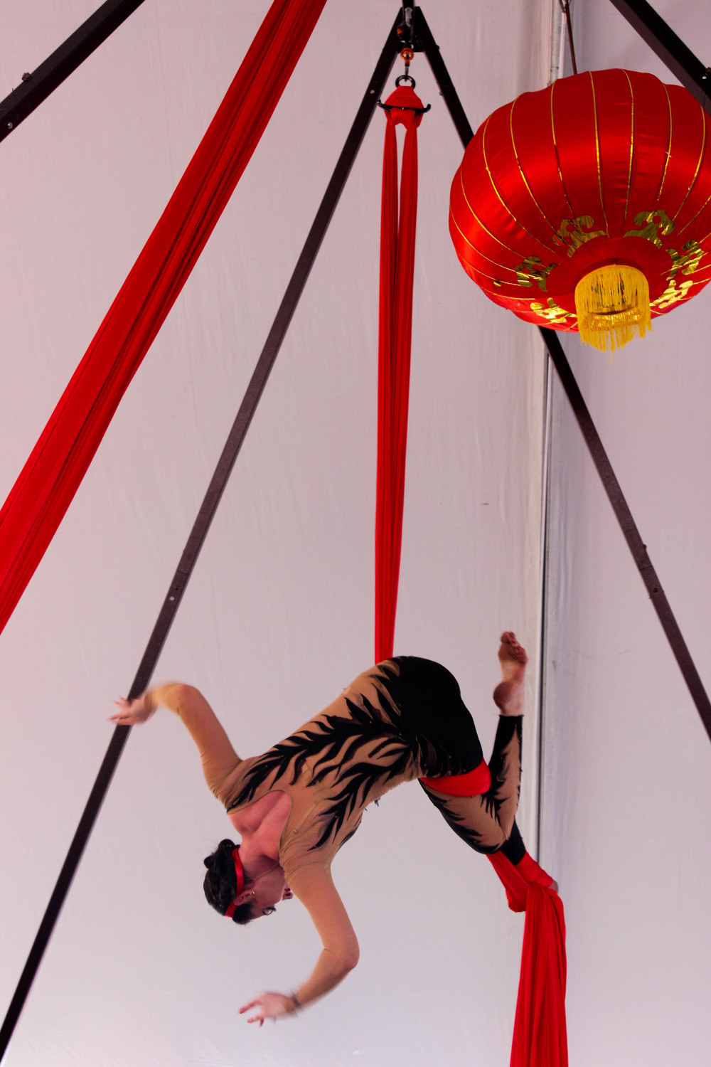 The Draiku Aerial Spectacle amazes the crowd of Austinites.