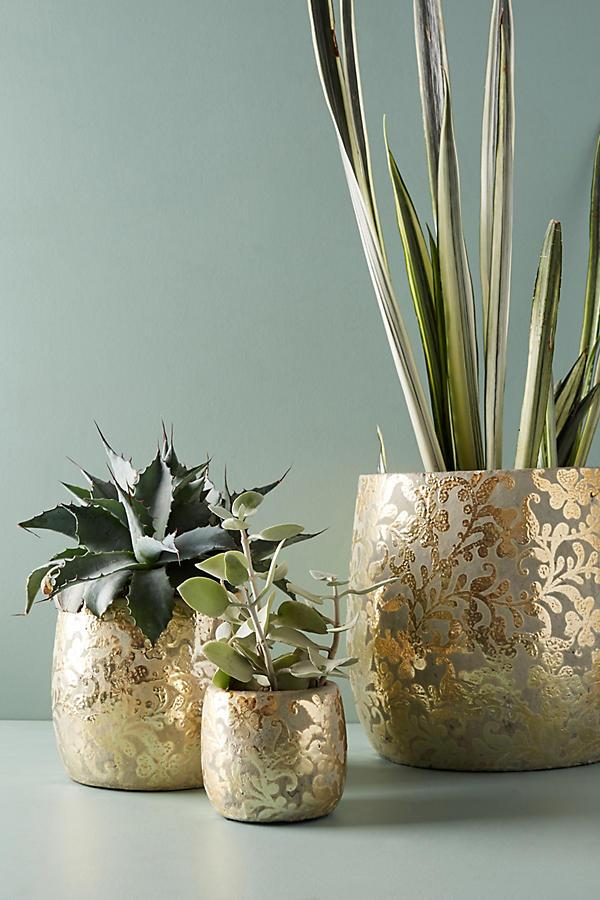Small Demask Metallic Pot ($10) - Another dose of gold and elegant prints — what better way to display a succulent collection?