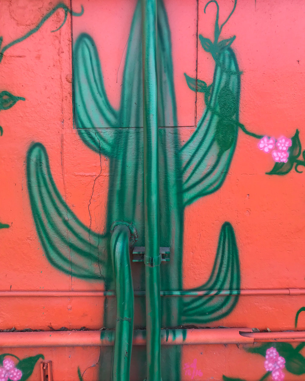 A cactus mural featured on the storefront of El Secreto de La Abuela