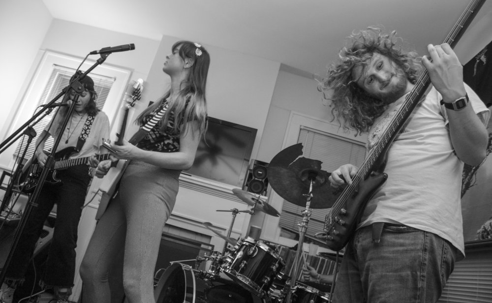 Bassist John Young of Merry Jane & The Fondas whips his curls back.