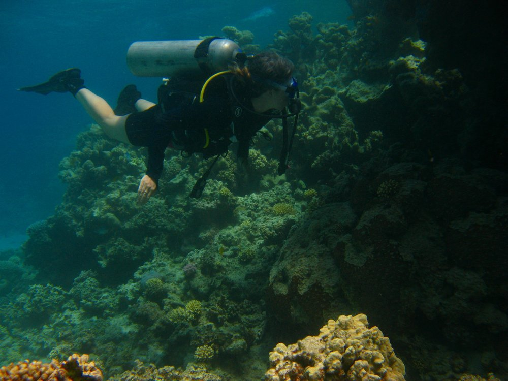 Me, scuba diving on my first trip to Dahab in May 2017.  Photo courtesy of Tarek Ali Images
