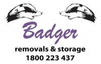 BadgerStorage.jpg