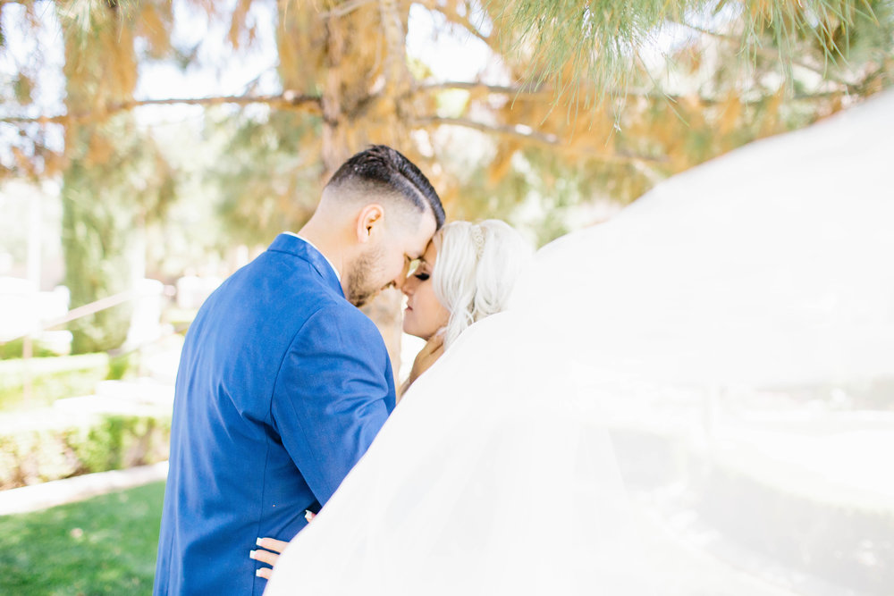 Bride's Veil Catches the Wind- Arizona Wedding Photographer
