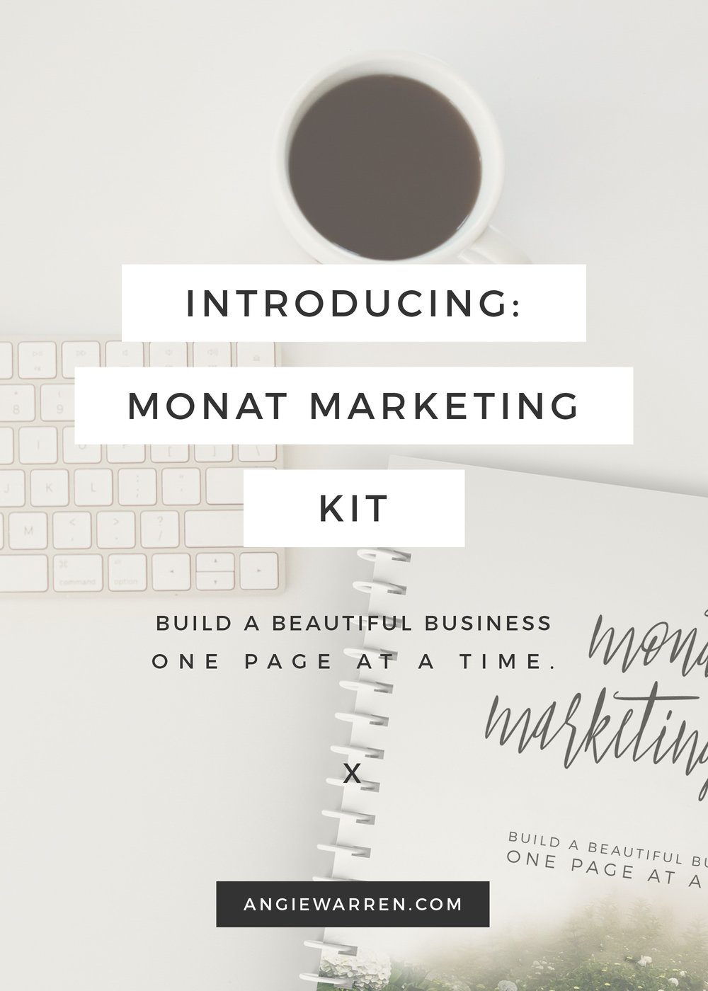 MONAT Marketing Kit / Business Planner / www.angiewarren.com